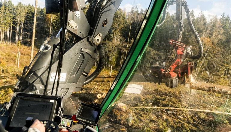 En skördare i arbete sett från förarhyttens perspektiv, med skärmar joysticks mm.