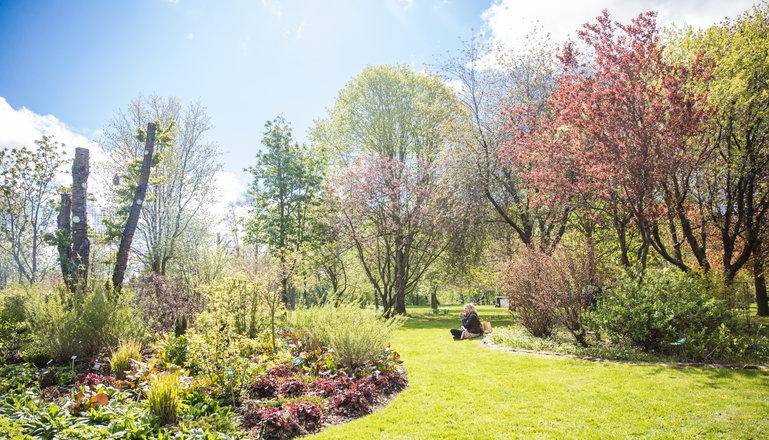 Vår i parken på Munkagård. Rabatter, gräsmatta och träd.