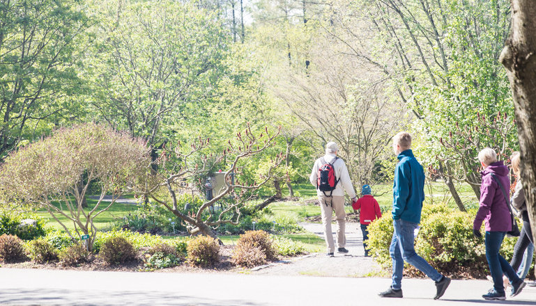 Besökare i Munkagårds park.