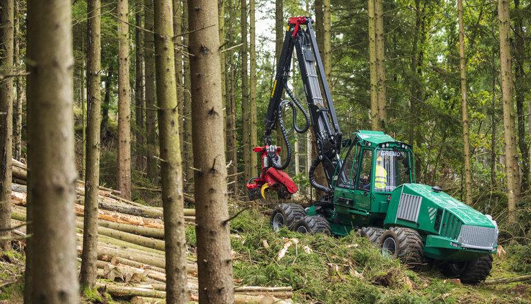 En skogsmaskin i arbete i granskog.