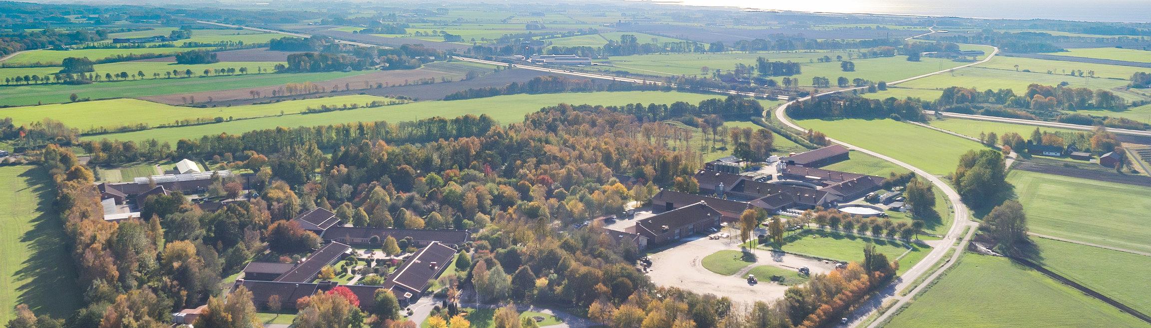 Skolan sedd från ovan.